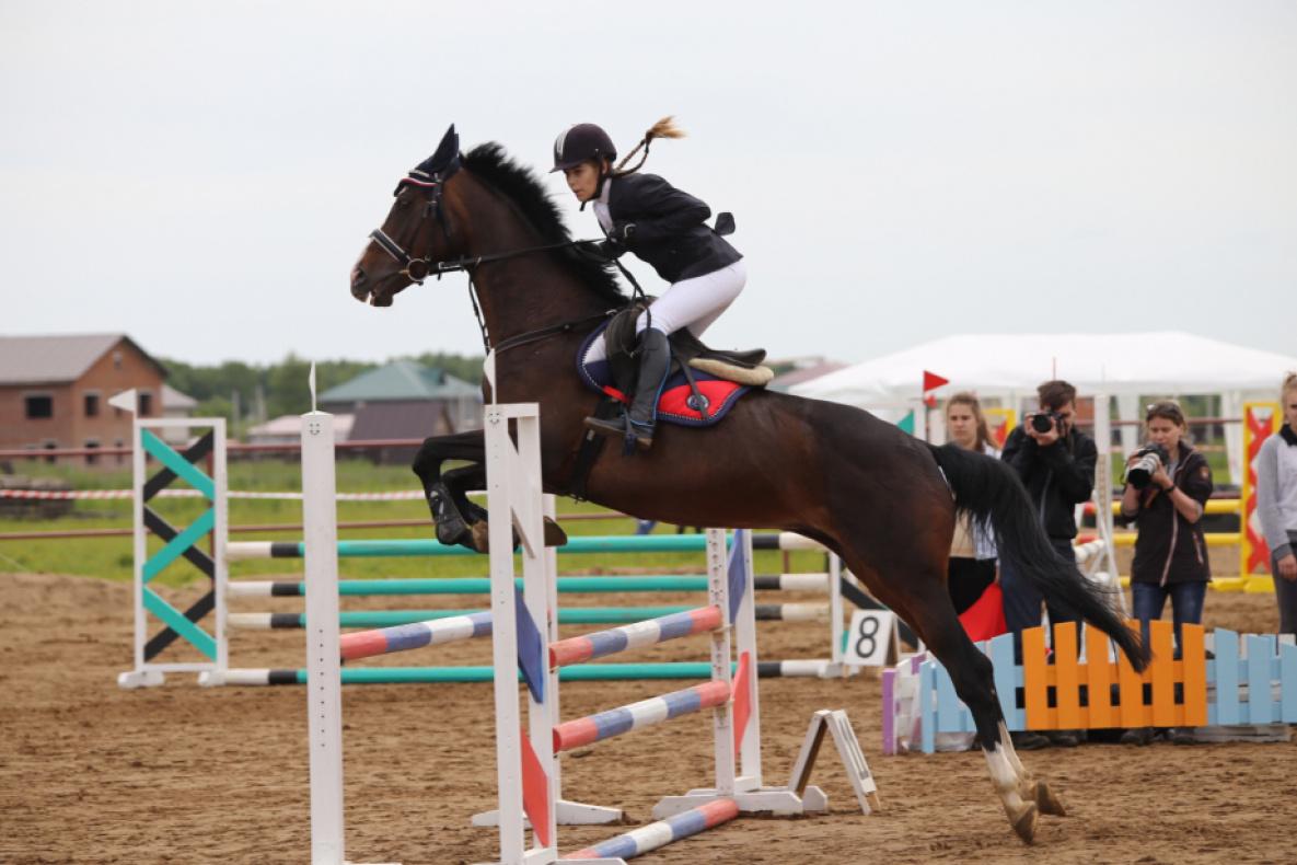 Спортсмены из Хабаровского края завоевали 30 медалей на чемпионате ДФО по конному спорту